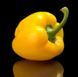 Studio shot of yellow bell pepper isolated black background Stock Photography