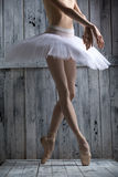 Studio shot, young legs graceful ballerina. Dancer standing on his toes. Close-up Royalty Free Stock Images