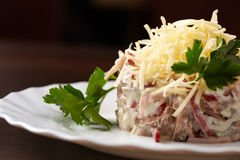 Studio snapshot of meat salad with grated cheese Stock Photos