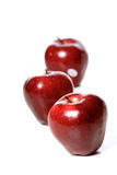 Studio soht of red apples on white background Royalty Free Stock Image