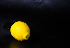 Studio som skjutas av den enkla citronen Arkivbild
