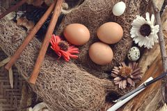 Studio strzelał przepiórek jajka na rocznika drewnianym tle zdjęcie stock
