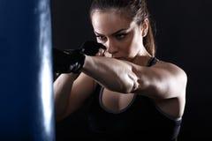 Studio strzelający żeński bokser obraz stock