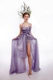 Studio strzelający piękny koronowany model w sukni obraz royalty free
