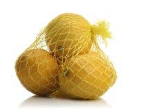 Studio tiré du citron sur le fond blanc Photographie stock libre de droits