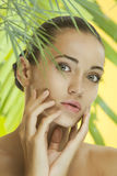Studio tropic Stock Images