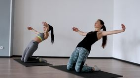 In the studio, two girls are engaged in pilates. Standing on their knees deviate back training the front of the thigh. And spreading their arms out to the sides stock video