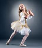 Studio van bevallig weinig balletdanser wordt geschoten die stock foto