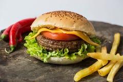 Studio van een hamburger wordt geschoten die Stock Fotografie