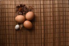 Studio van eieren op een uitstekende houten achtergrond wordt geschoten die Stock Afbeelding