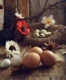 Studio van eieren op een uitstekende houten achtergrond wordt geschoten die Royalty-vrije Stock Foto