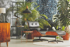 Studio with vintage furniture. And green, exotic plants royalty free stock photo