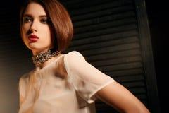 Studiofoto eines schönen Brunette mit Mischlicht Lizenzfreie Stockfotografie