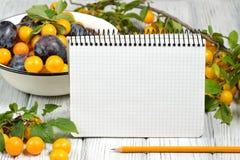 Studiofotografi av den destinerade anteckningsboken för öppen tom cirkel som omges av plommoner och blyertspenna för nya frukter  Royaltyfri Foto