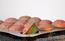 Studion sköt av en tin av home gjorda muffiner Royaltyfria Foton