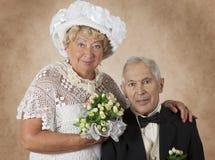 Studioportret van een bejaard paar Royalty-vrije Stock Afbeelding
