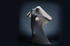 Studioschot van het gillen naakt vrouwelijk silhouet Royalty-vrije Stock Foto