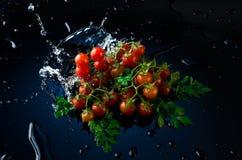 Studioskott med frysningrörelse av körsbärsröda tomater i vattenfärgstänk på svart bakgrund Arkivbild
