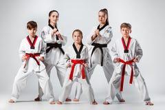 Studioskottet av gruppen av ungar som utbildar karatekampsporter Arkivfoton