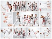 Studioskottet av gruppen av ungar som utbildar karatekampsporter royaltyfri bild