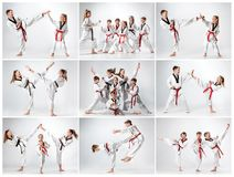 Studioskottet av gruppen av ungar som utbildar karatekampsporter fotografering för bildbyråer