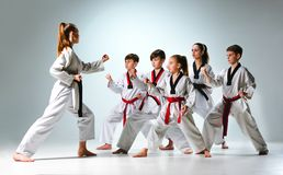 Studioskottet av gruppen av ungar som utbildar karatekampsporter arkivbild