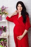 Studiostående av den härliga gravida kvinnan i rött Arkivbilder