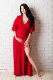 Studiostående av den härliga gravida kvinnan i rött Royaltyfri Fotografi