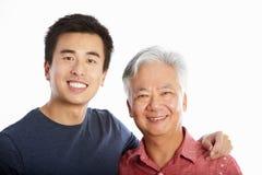 Studiostående av den kinesiska fadern med den vuxna sonen royaltyfri bild