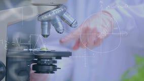 Studiować pod mikroskopem zbiory