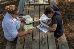 Studiy bibel för picknicktabell Royaltyfri Foto