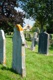 Studland教会多西特英国 免版税库存照片