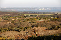 Studland heathland Stock Photography