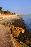 Studland-Strand Dorset England Großbritannien gelegen zwischen Swanage und Poole und Bournemouth Stockfotografie