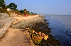 Studland strand Dorset England UK som lokaliseras mellan Swanage och Poole och Bournemouth Royaltyfri Foto