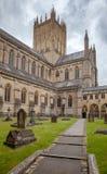 Studnie Katedralny Somerset Południowy Zachodni Anglia UK Zdjęcia Stock