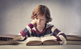 Study. Concentrated child reading a book stock images