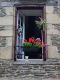Study of decorative Window Stock Image