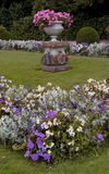 A study of a formal garden with plants and flowers. Stock Image
