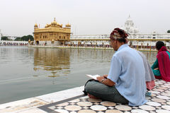 Study in front of Golden Temple, Amritsar, Punjab, India Royalty Free Stock Photo