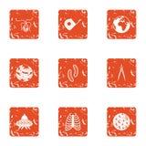Study of the globe icons set, grunge style. Study of the globe icons set. Grunge set of 9 study of the globe vector icons for web isolated on white background stock illustration