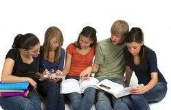 Study Group. Diverse group of students studying Royalty Free Stock Photography