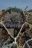 Study of Lobster pots and rope. Stock Photos