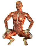 Study muscle man squatting Stock Photo