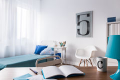 Study is a pleasure in room like this Royalty Free Stock Photography