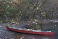 Study of Quiet Water in a Canoe. A red canoe rests on a lake shore. Early spring foliage surrounds the scene which evokes peace and also adventure. What royalty free stock photos