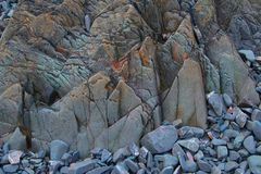 Study of Rock and Mineral formations, Northumberland and Scottish Borders. Near St Abbs and Eyemouth Royalty Free Stock Images