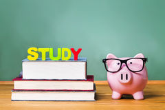 Study theme with pink piggy bank with chalkboard. In the background as concept image of the costs of education Stock Photos
