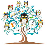 Study the tree and cheerful owls Royalty Free Stock Photos