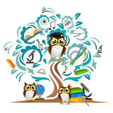Study the tree and cheerful owls Royalty Free Stock Images
